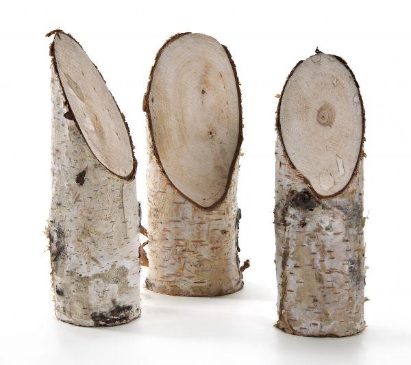 Holz Birkenstämmchen Ø 4-6cm, 20 St., 15cm lang, eine Seite schräg abgeschnitten, verpackt im Netz
